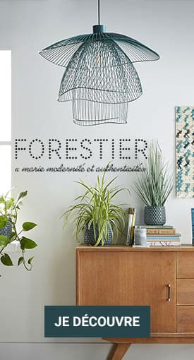 Focus Forestier - lightonline